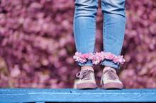 Legs In Jeans Against Blooming Cherr Trees Background