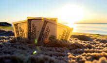 Three Dollar Bills Are Buried In Sand On Sandy Beach Near Sea At Sunset Dawn