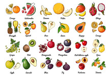 Vector Food Icons Of Fruits. Colored Sketch Of Food Products. Exotic Fruits, Melon, Figs, Kiwi, Grapes
