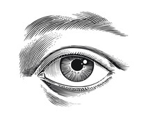 Eye Of The Person