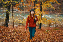 The Traveler Walks In Nature In The Park And Tall Trees Yellow Leaves River In The Background Landscape