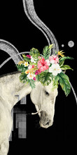 3d Illustration Of Flowers Blooming On Horse's Head