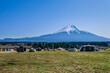 Leinwandbild Motiv 静岡県朝霧高原の富士山が見えるキャンプ場