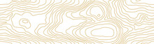 Seamless Gold Wooden Pattern. Wood Grain Texture. Dense Lines. Abstract White Background. Vector Illustration