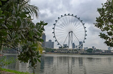Singapore Flyer- It Reaches The Height Of A 55-storey Building, Having A Total Height Of 165 M