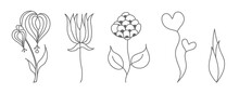 Set Of Contour Silhouettes Of Flowers For Coloring Books, Scrapbooking, Decoration And Creative Design. Flat Style