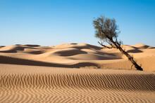 Sand Dunes In The Desert Of Sahara, South Tunisia
