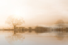 Rural Misty Norfolk Landscape With Water Reflections