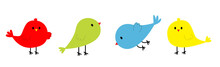 Bird Icon Set Line. Cute Cartoon Kawaii Character. Birds Baby Collection. Standing, Flying, Singing Song Chick Animal. Decoration Element. Sticker Template. Flat Design. White Background.