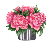 Watercolor Peonies Bouquet In A Basket Isolated On White Background. Hand Painted Pink Flowers And Green Leaves. Floral Illustration