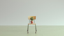 Simple New Home Room Old School Chair With Basil Plant Light Sandy Green Parquet Flooring With White Wall Cottage Core Style Terracotta Plant Pot An Saucer 3d Illustration Render