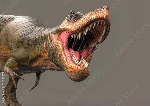 green tyrannosaurus rex is going to bite on dark background side view Fotobehang