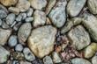 Verschiedene Steine an einem Flussufer