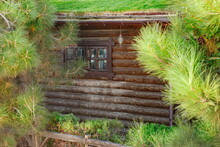 Modern Log Cabin Wooden House With Two Windows On A Hillside At Forest Or Park With Green Eco Friendly Roof Covered Lawn From Fresh Grass. Wooden Lodge Or Hunting House With Sod Roof.