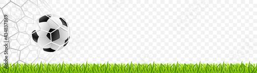 Obraz na plátne Soccer football on the net with grass