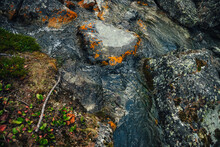 Scenic Nature Background Of Turquoise Clear Water Stream Among Rocks With Mosses, Lichens And Wild Flora. Atmospheric Mountain Landscape With Transparent Mountain Creek. Beautiful Mountain Stream.