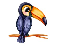 Hand Drawn Watercolor Illustration Of Toucan Tropical Bird In Cute  Cartoon Style, Isolated On White.