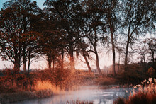 Early Morning Mist Rising From A Lazy Pond