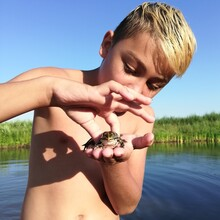 Cute Boy Holding Frog By Lake