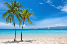 Sunny Tropical White Sand Beach With Coco Palms And The Turquoise Sea On Jamaica Caribbean Island.