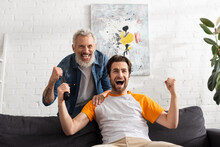 Father And Son Showing Yes Gesture While Watching Tv At Home