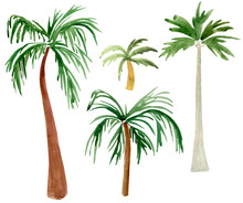 Palm Trees Watercolor Elements Set. Template For Decorating Designs And Illustrations.