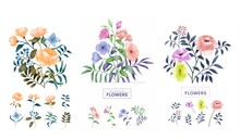 Set Of Bouquet Of Flowers On White Background Illustrations