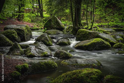 Tela Naturschutzgebiet Höllbachtal im vorderen Bayerischen Wald