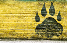 Old Black Paw Prints On Cement Wall Yellow Background With Space