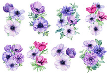 Watercolor Anemones. Bouquet Of Flowers. Floral Isolated Elements For Wedding, Invitations, Postcards. Watercolor