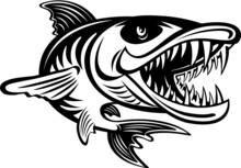 Angry Jumping Cartoon Style Barracuda