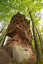 Red Sandstone Rocks On The Tour To The Geiersteine Near The Small Village Of Lug