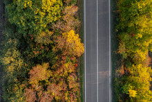 Aerial View Of Beautiful Forest And Empty Road. Autumn Season
