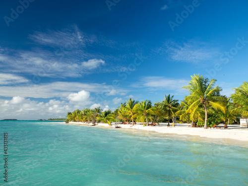 Canvastavla Maldives tropical islands panoramic scene, idyllic beach palm tree vegetation an