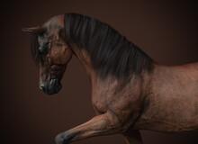 Brown Horse Portrait - 3d Rendering