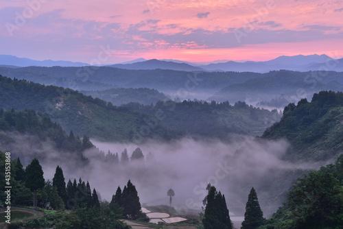 里山の夜明け Fototapet