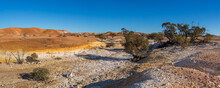 Dry Creek Bed With Mallee Trees And The Painted Hills In The Background. South Australia, Australia.