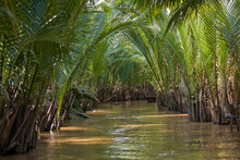 Arm Of The Mekong Delta,  Can Tho, Mekong Delta, Vietnam, Southeast Asia