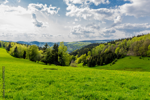 Cuadros en Lienzo Springlike awakening along the Rennsteig in the most beautiful sunshine