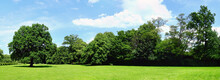 Park Im Sommer - Panorama