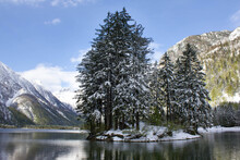 Trees On Small Island On Lago Del Predil In Italy, Europe, Background Mountains Covered With Snow