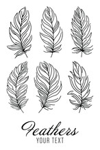 Set Of Bird Feathers. Tribal Feathers. Decorative Ethnic Stylized Feather Ornamental Indian Aztec Design, Colored Birds Plume Curved Silhouettes. Abstract Background. Vector Illustration