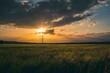 Sonnenuntergang über dem Feld mit Strommast