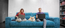Cheerful Young Woman And Man Working On Notebooks While Sitting On Sofa With Adorable Corgi In Glasses. Happy Couple Using Modern Laptops While Resting On Couch With Cute Dog At Home.