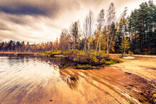 Forest Lake In The Late Autumn. The View From The Sandy Beach