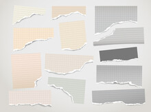 Set Of Torn Yellow Paper Stripes And Note, Notebook Sheet Stuck On White Background. Vector Illustration