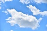 Fototapeta Na sufit - niebo czyste