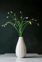 Flowering Chives In Vase
