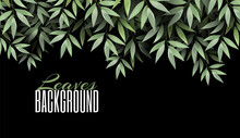 Natural Realistic Green Leaf. Greenery Forest Branch Leaves On A Dark Background. Luxury Banner And Place For Text. Promotional Template. Abstract Design Element. Vector Illustration.