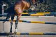 The horse overcomes an obstacle. Equestrian sport, jumping. Overcome obstacles.